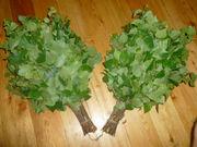 Продам экологически чистые березовые веники.