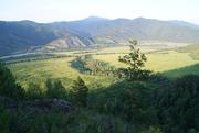 Земельный Участок в горном Алтае.